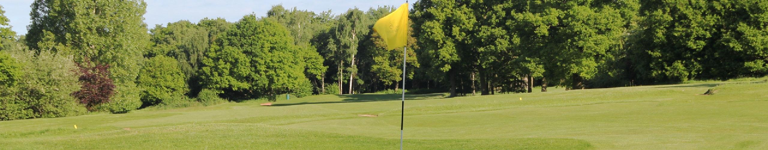Golf course yellow flag